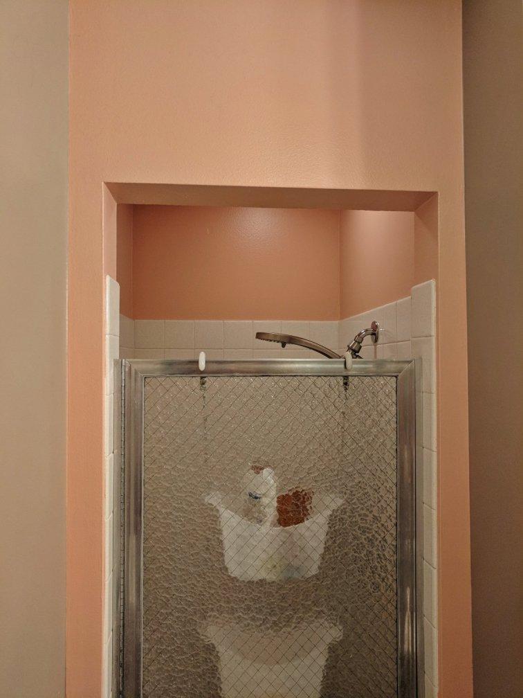 Pink shower in mid-century modern bathroom