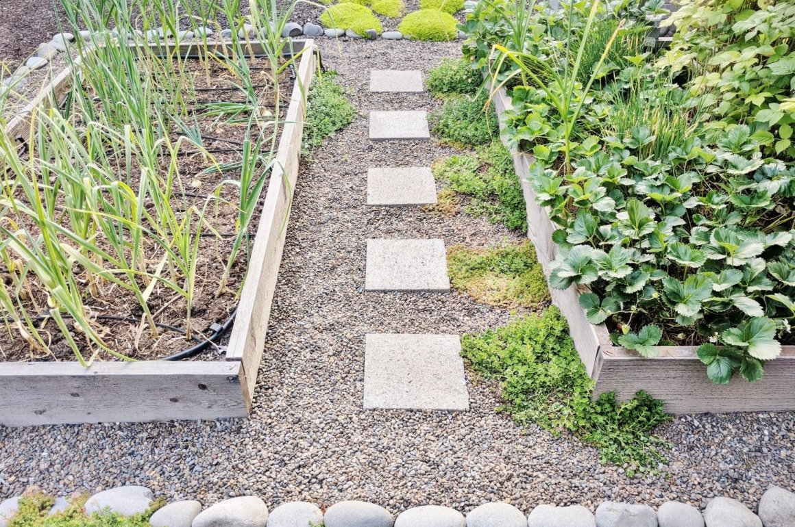 Raised bed landscaping in 5 steps