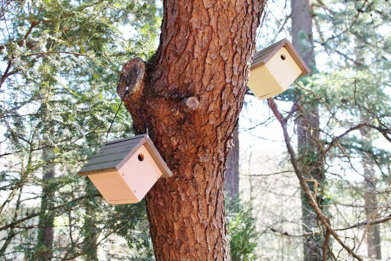 The Whimsical Birdhouse Village Your Yard Needs Right Now: Want to make your yard a little more magical? Follow this easy tutorial to display a collection of Scandinavian style birdhouses in your favorite home décor colors. #birdhouse #yard | Hammer & a Headband