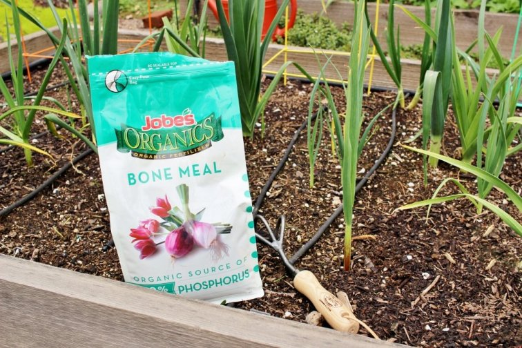 Using bone meal in the garden