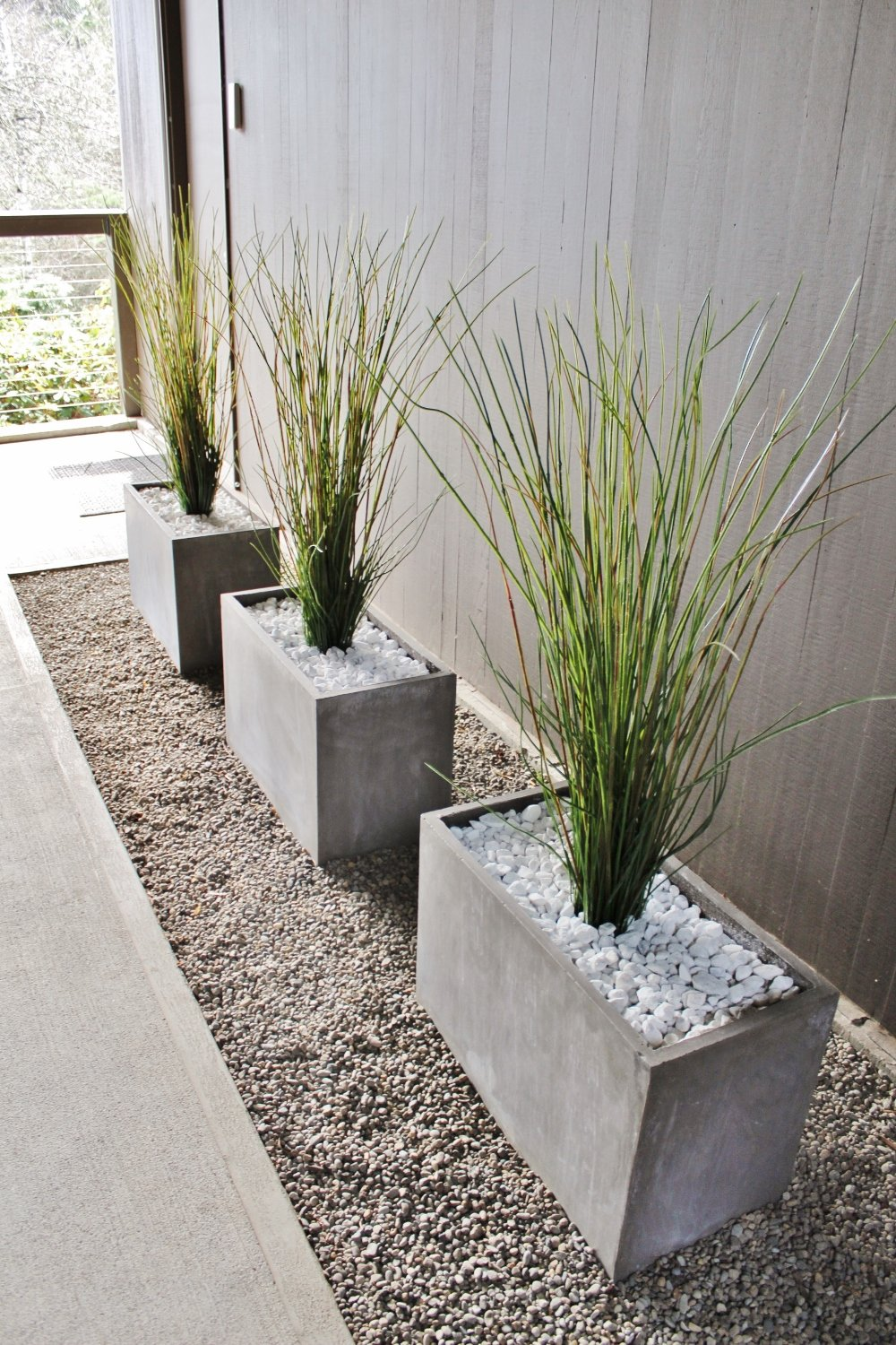 Modern breezeway front porch with unkillable plants