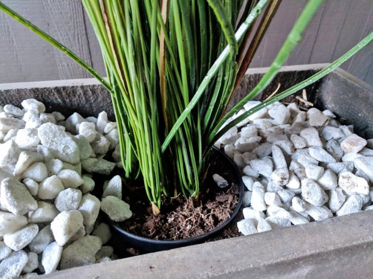 Planting artificial grass in a modern concrete planter with white decorative rock