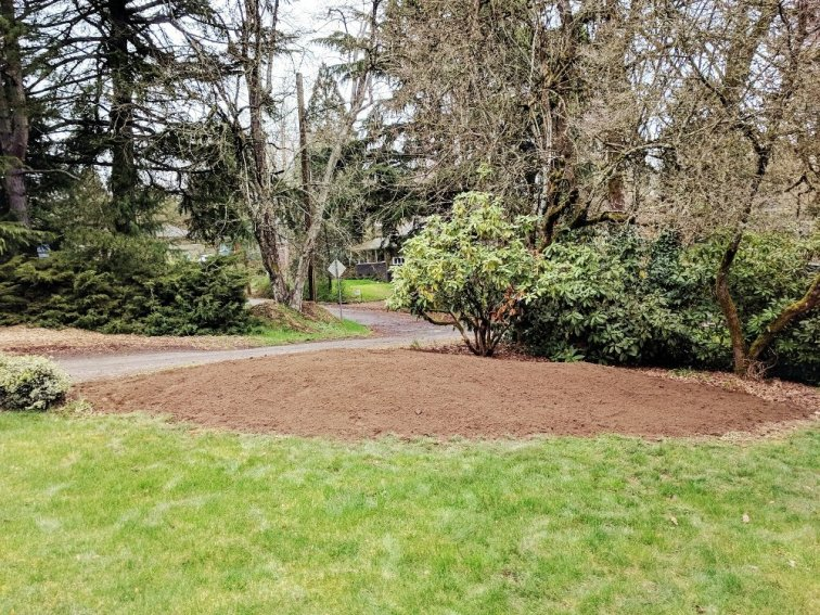 Shaping a berm for the front yard landscape