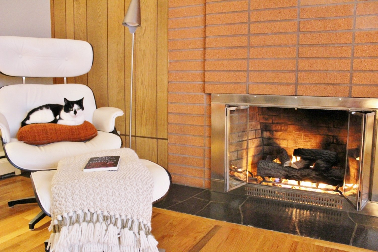 Cat relaxing in chair next to midcentury modern fireplace