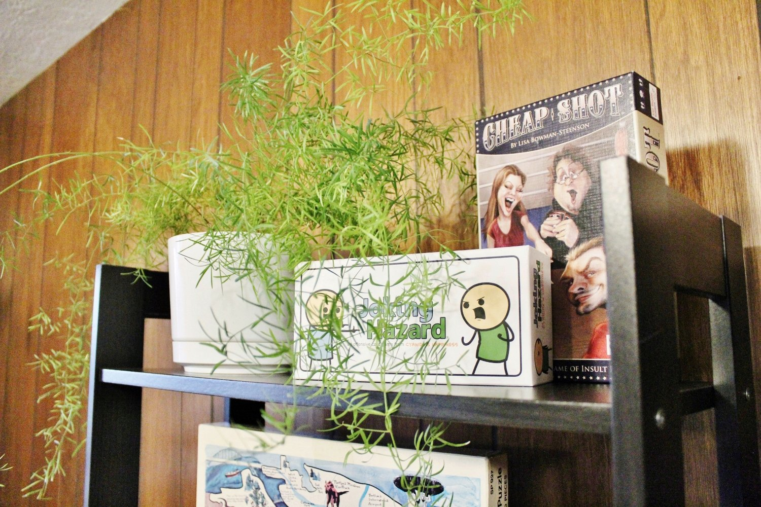 Here's a modern way to store and display your board games so they are easy to access and pretty to view, inspiring more game nights.