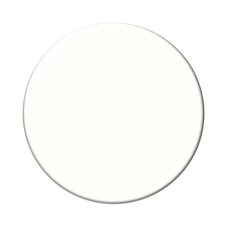 Sherwin Williams High Reflective White neutral paint color