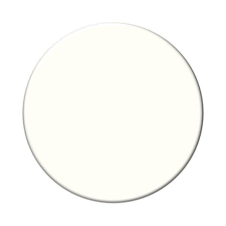 Behr Polar Bear neutral paint color