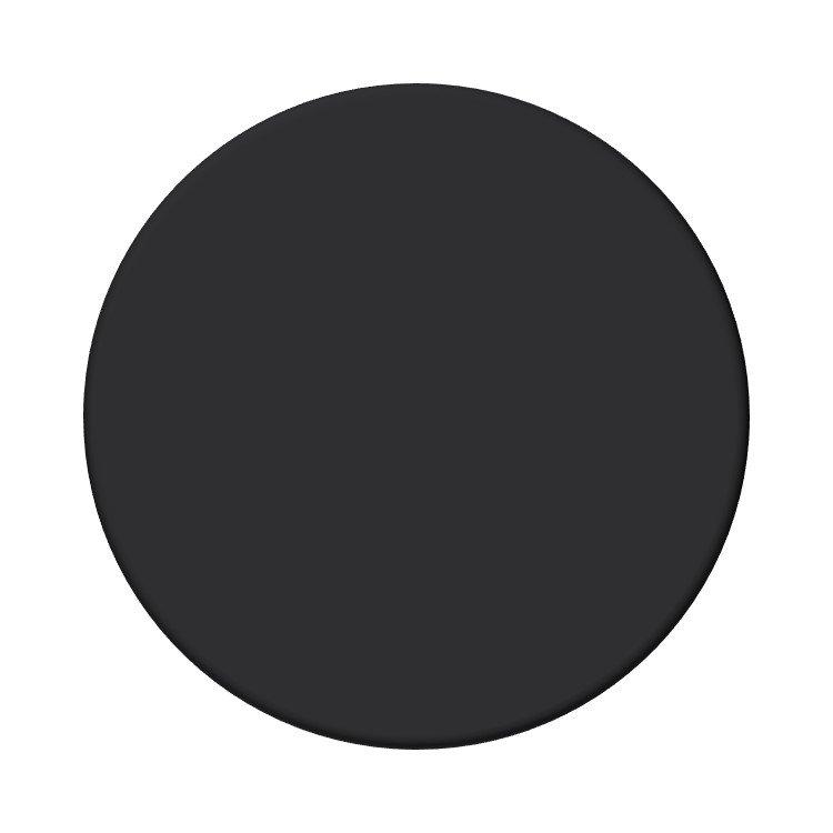 Sherwin Williams Tricorn Black neutral paint