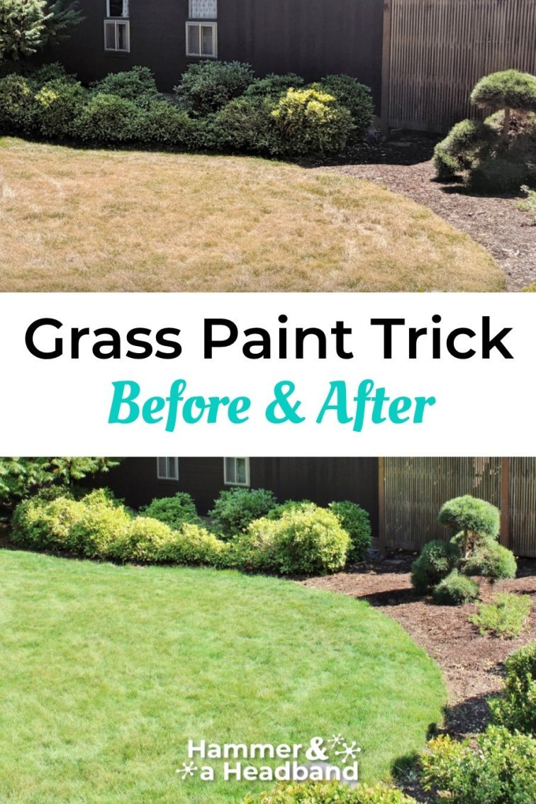 Grass paint trick before and after