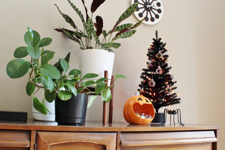 Decorating with a Halloween tree