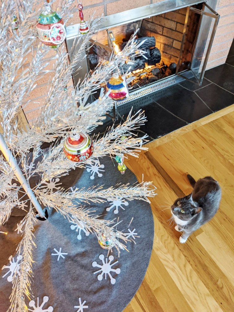Gray kitty looking at Shiny Brite ornaments on aluminum Christmas tree