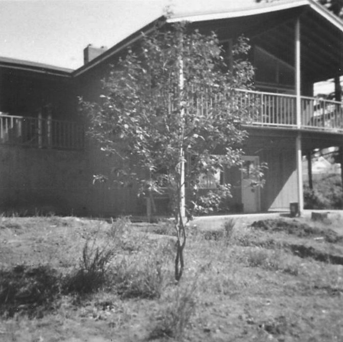 1960s ranch backyard with deck and patio