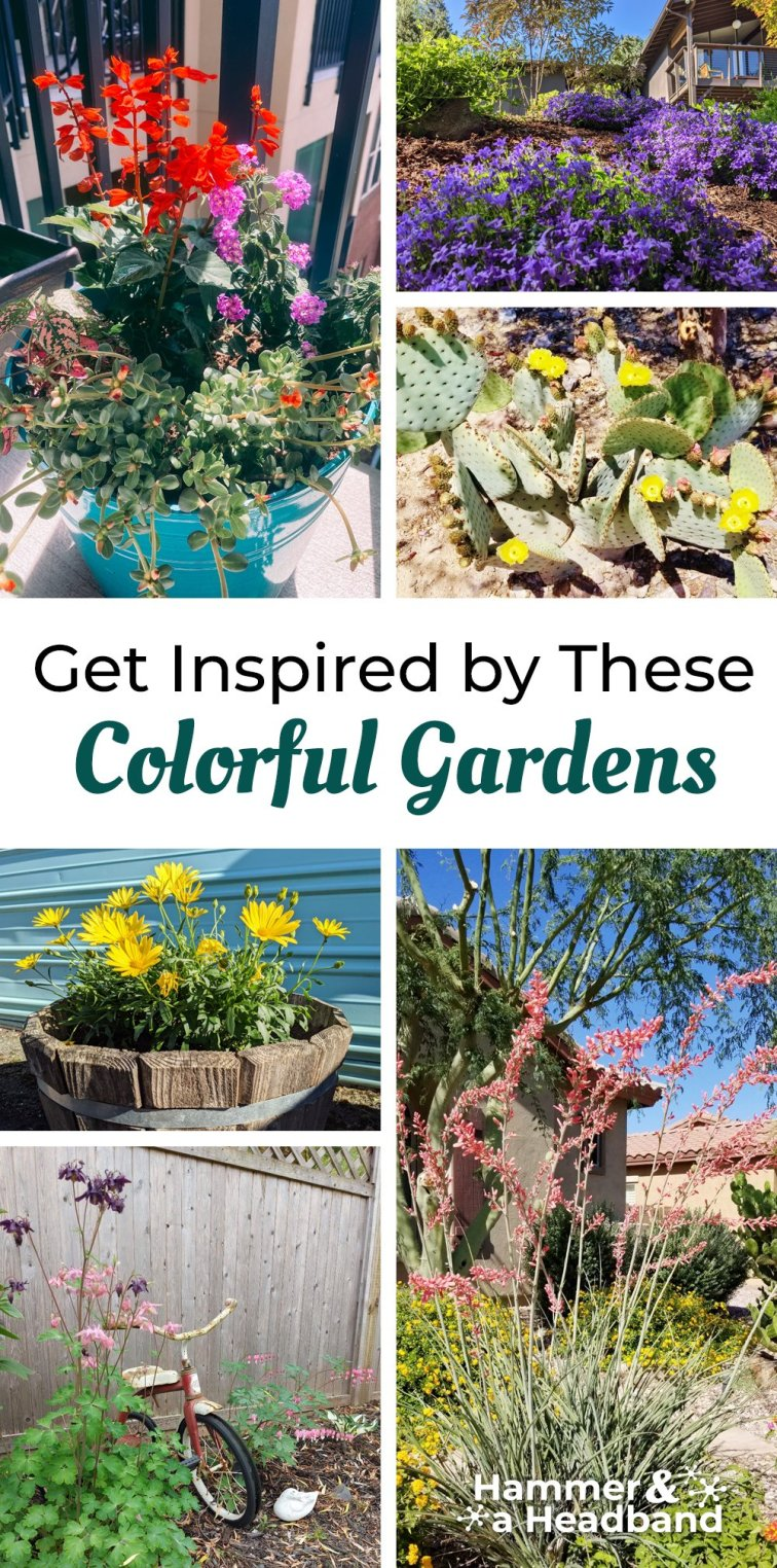 Get inspired by these colorful gardens