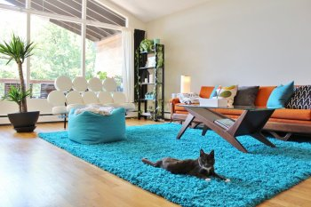 Mid-century modern living room with orange couch and turquoise area rug