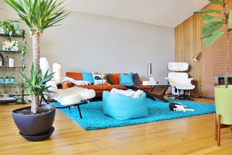 Mid-century modern living room with turquoise shag area rug