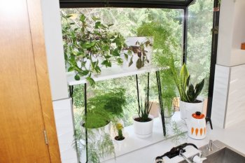DIY plant stand with hairpin legs in mid-century modern kitchen