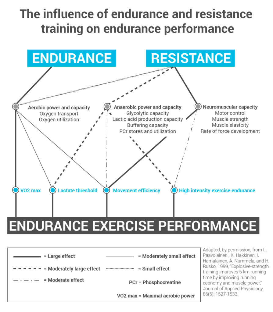 the-influence-of-endurance-and-resistance-training-on-endurance-performance