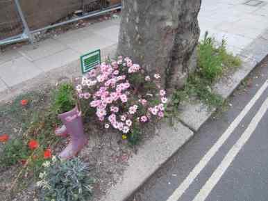2015-11-personalised-tree-pit
