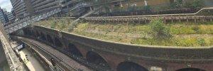 Hammersmith Highline
