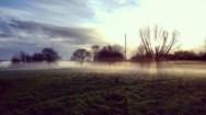 Wormwood scrubs fog