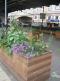 Planters under flyover
