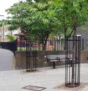 Tree cage Hackney