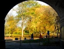The Arches, Ravenscourt Park November 2010 – Neville Collins