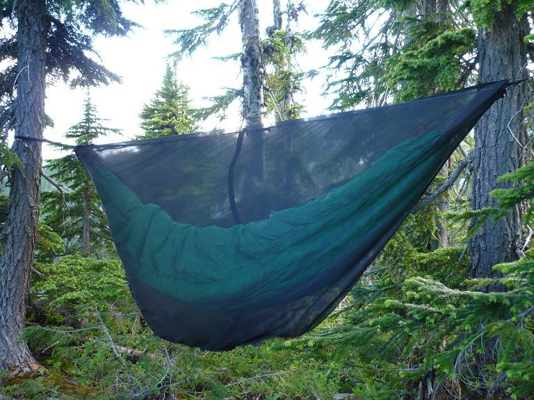 North Cascades Park w ENO Guardian bug net 71819