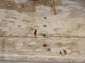 Chesapeake Mill Timbers