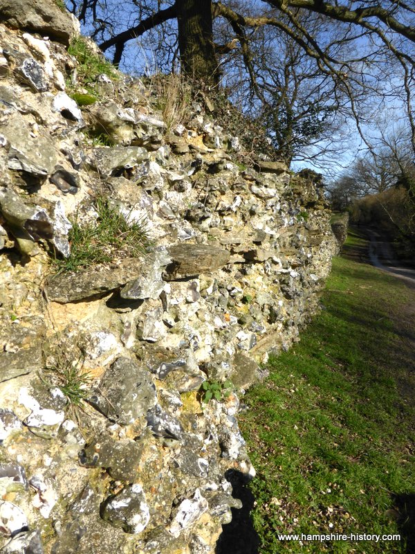 The Silchester Project