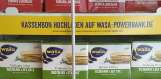 Wasa Delicate Powerbank