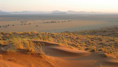 Namibia hat auch wirtschaftlich einiges zu bieten. Quelle: dpa
