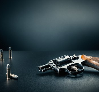 Online Handgun License Training