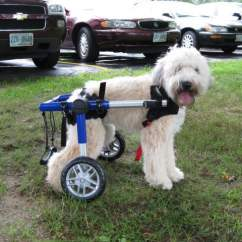 Wheel Chairs For Dogs Black Fitted Chair Covers Find Used Pre Owned Dog Wheelchairs Handicappedpets Can Be Purchased At Useddogwheelchairs Com