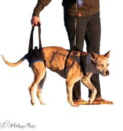 walkabout rear harness [ 916 x 916 Pixel ]