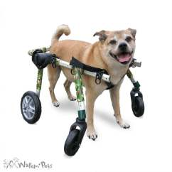 Wheelchair Dog Living Room Chairs For Sale Full Support Medium Wheelchairs Walkin Wheels Fully Supportive