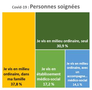 Pour les personnes ayant pu bénéficier de soins liés à la Covid-19, 37,8 % vivent en milieu ordinaire dans leur famille, 30,9 % vivent en milieu ordinaire seuls, 17,2 % vivent en établissement médico-social, 14,1 % vivent en milieu ordinaire avec un accompagnement médico-social