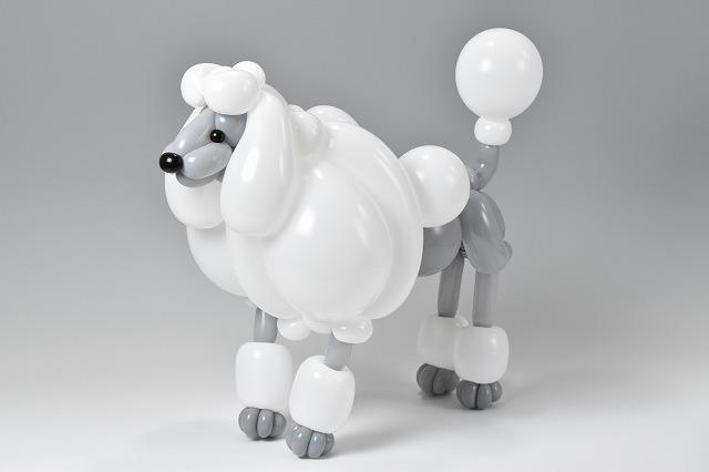 The Best Balloon Art Handmade Charlotte