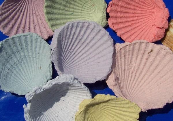 Bunte Papiermuscheln  Sommerfeeling fr zu Hause