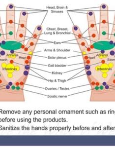 Hand reflexology chart  max acupalm also charts foot  ear tips rh handreflexologycharts