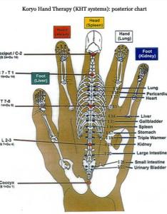 Hand reflexology chart koryo therapy kht systems also charts foot  ear tips rh handreflexologycharts