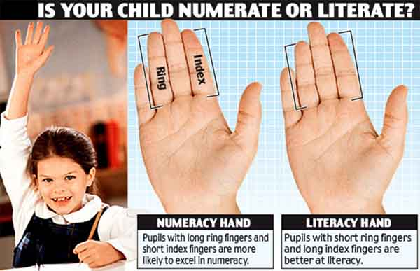Finger length shows your talent for math / literacy.