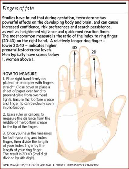 Fingers of fate - 2D:4D ratio: how the measure the length of the index finger + ring finger?