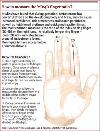 University of Cambridge: how to measure the 2D:4D digit ratio.