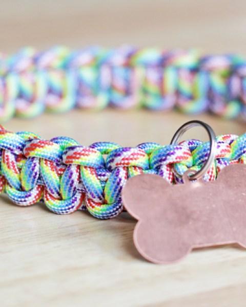 DIY Mini Project ~ DIY Dog Collar