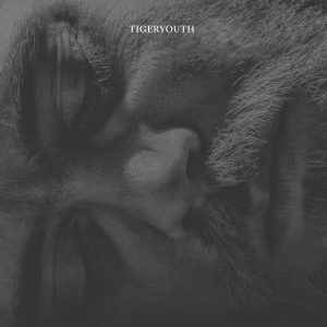 tigeryouth_vinyl_cover.indd