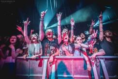 Blink 182, ADTR & SWMRS
