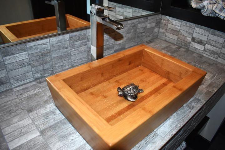 Vessel Sink, Turtle Drain