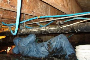 Crawl Space Leaks investigation