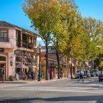 Minor Plumbing Services in Walnut Creek California